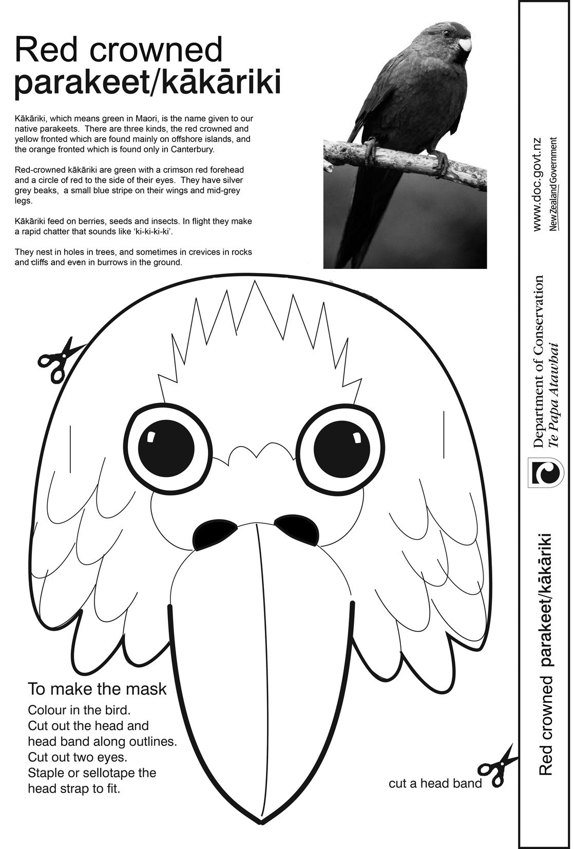 how to make a bird mask bird mask template printable bird mask