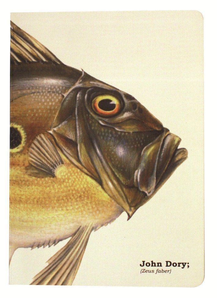 Piscis John Dory Fish - Ruled Paper Notebook A5 | John dory fish ...