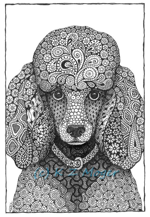 Coloriage mandala pinterest coloriage caniche et dessin - Dessin caniche ...