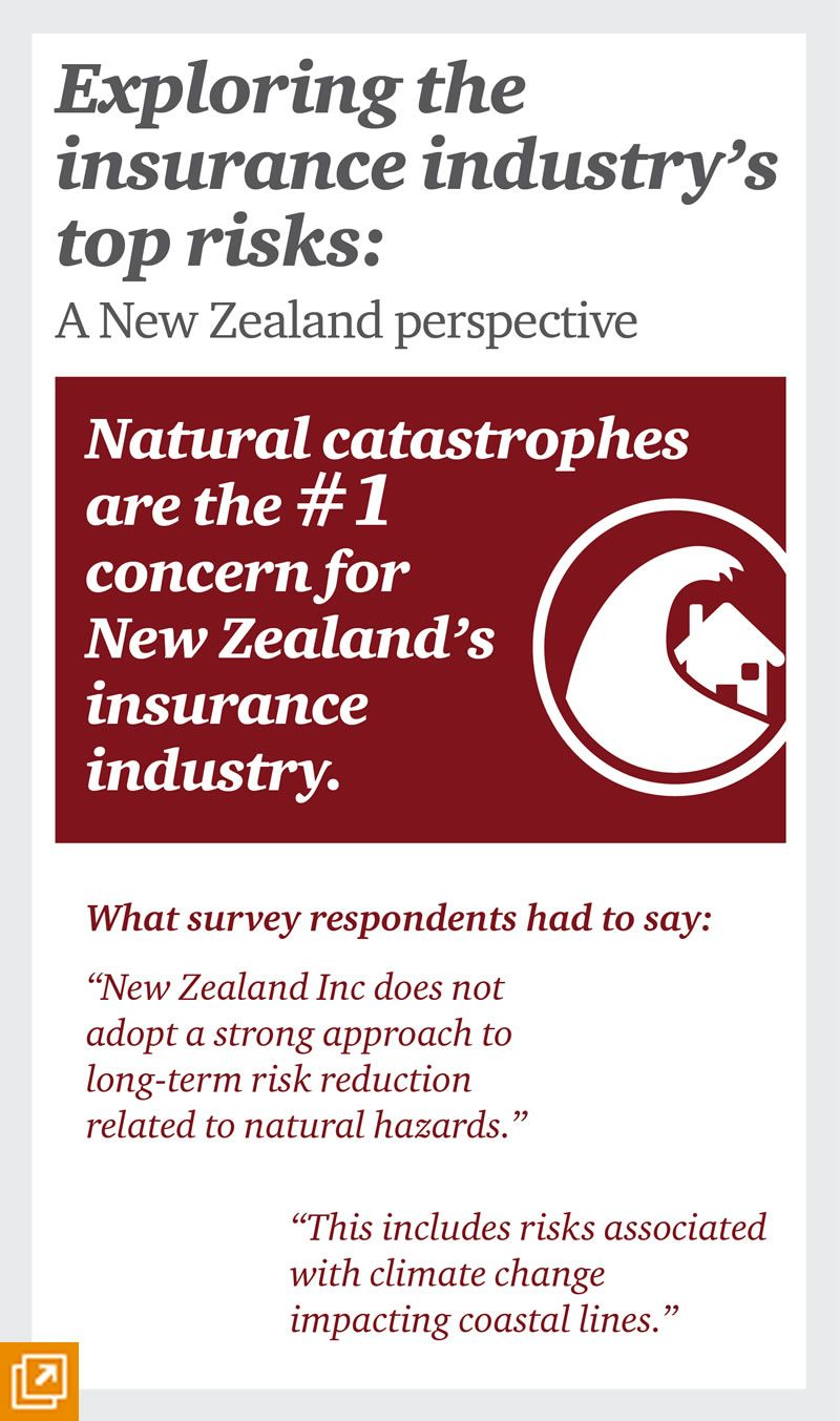 Infographic Nz Insurance Industry Number 1 Risk Natural