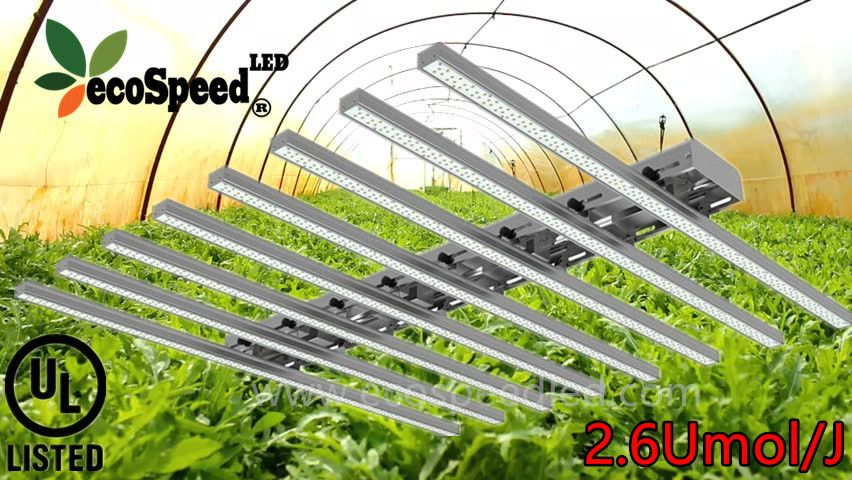 For more info about LED grow light,pls visit Web www