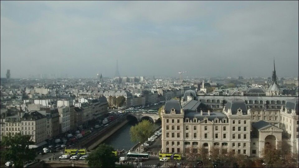 View from Notre dame  (Can you see the Eiffel tower)