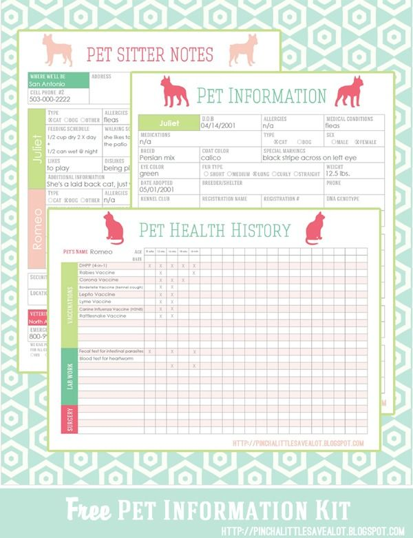20 Must Have Home Printables For The New Year With Images Pet Health Pet Organization Pet Sitting Business