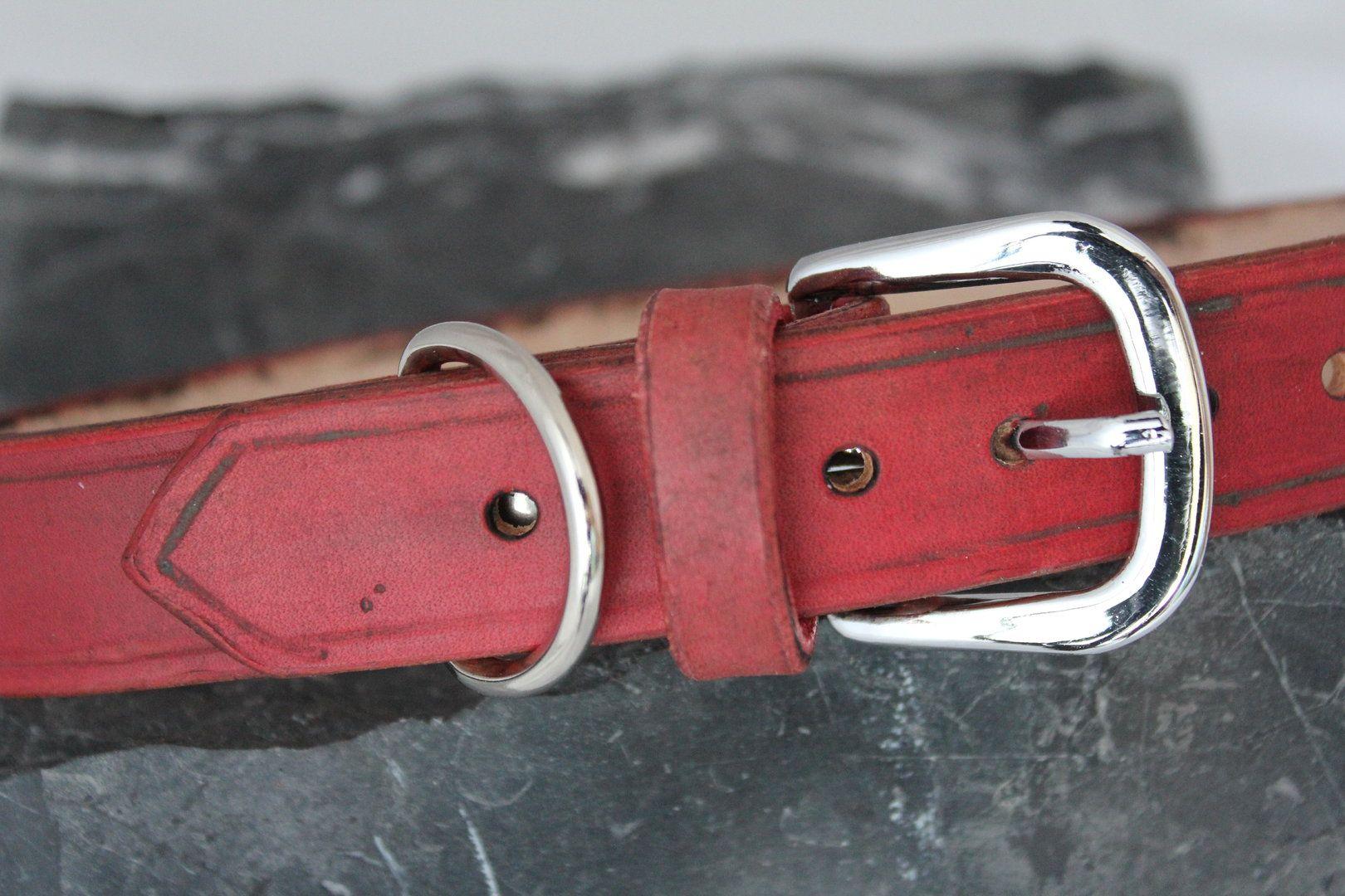 Hundehalsband rot Schriftzug Tussi in Gr M | Leder | Pinterest ...