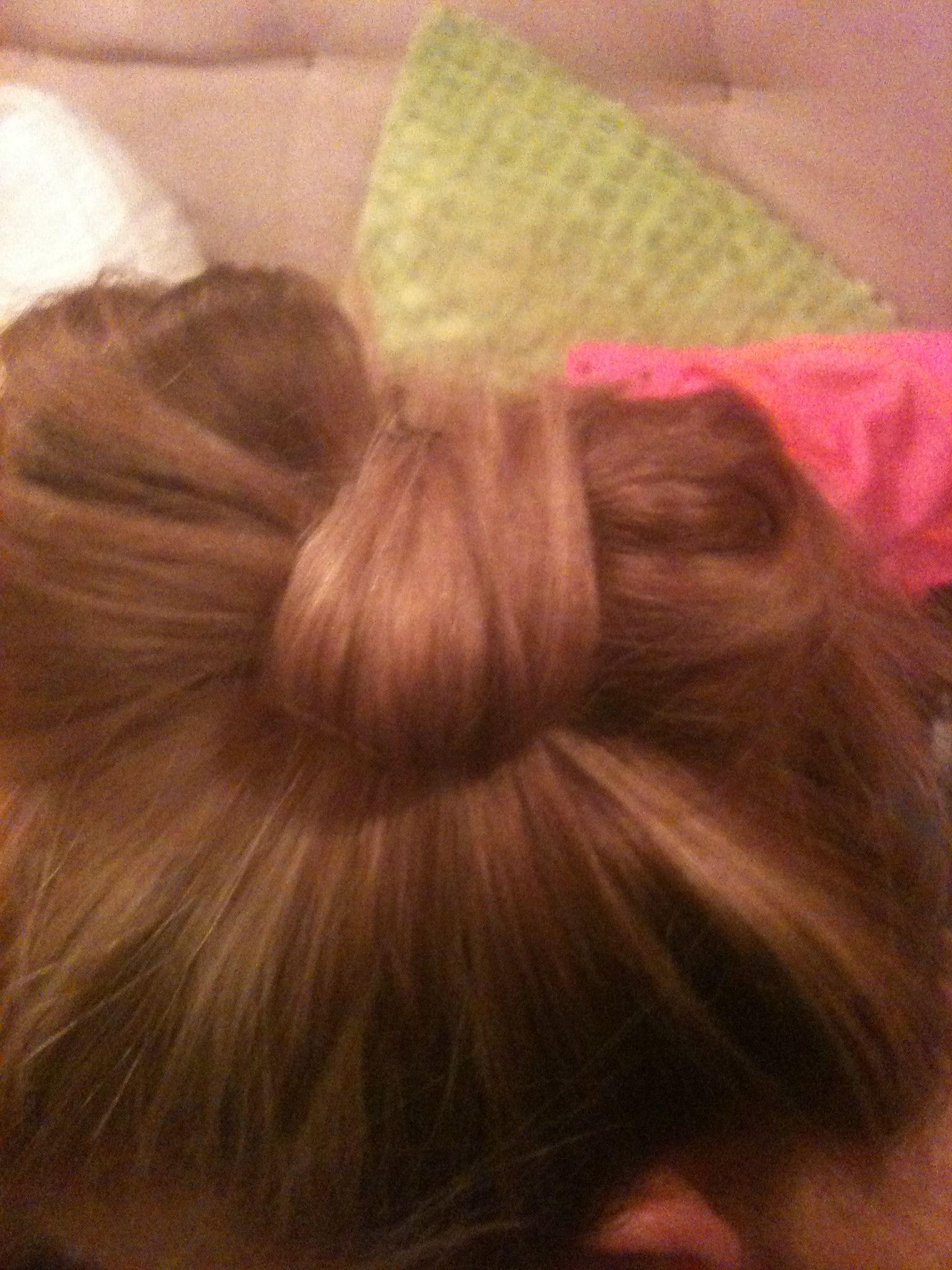 Bow bun cute hair pinterest bow buns