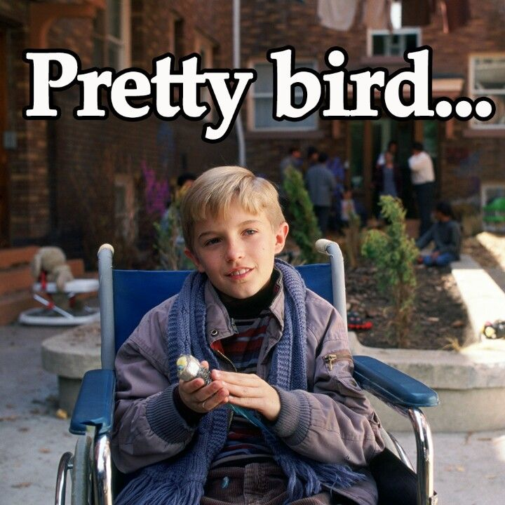 Say Pretty Bird...Polly Want A Cracker? Bahahaha