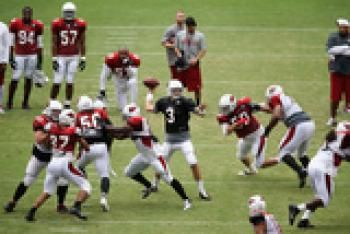 ARE YOU HEAD TO THE CARDINALS TRAINING CAMP??