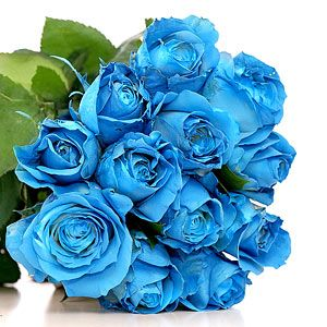 Pictures Of Blue Roses Blue Rose Bouquet Blue Roses Wallpaper Blue Roses