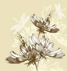 「drawing floral」的圖片搜尋結果