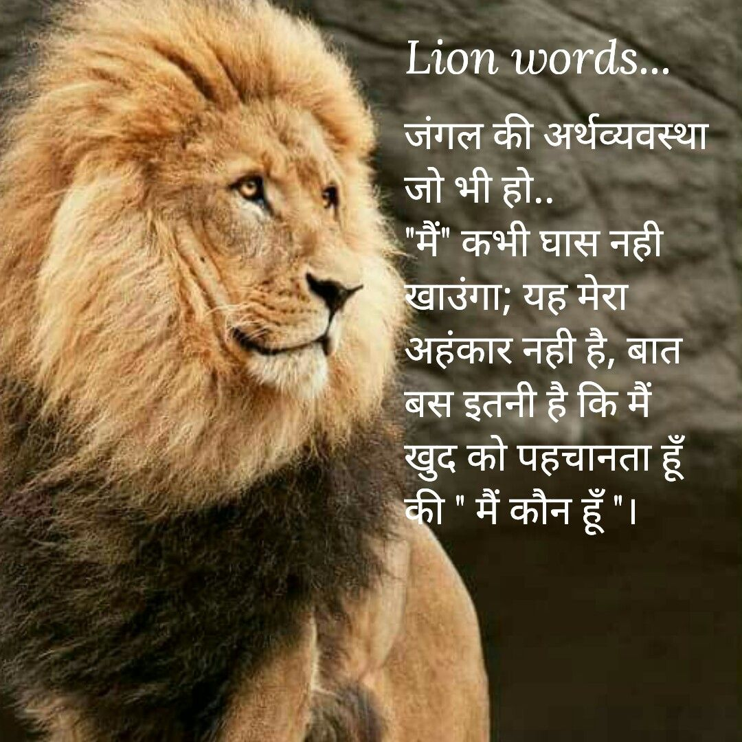 Lion Words Krishna Khaniya Life Quotes Hindi Quotes