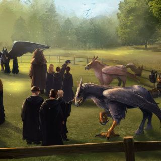 The Gryffindor and Slytherin students learn about Hippogriffs.