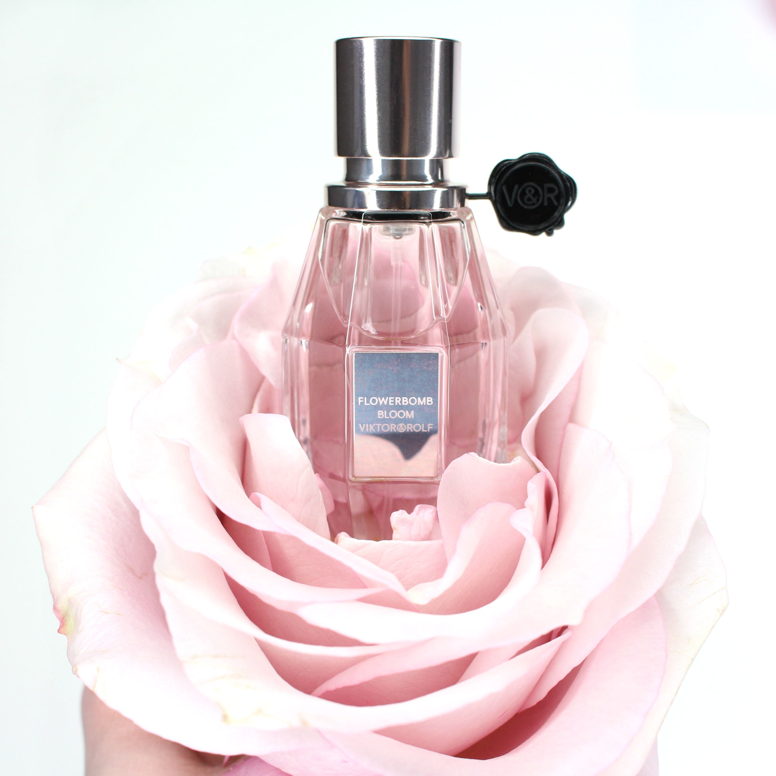 Viktor & Rolf -  Flowerbomb Bloom EdT - Parfum erhältlich bei Douglas. Viktor & Rolf - Flowerbomb Bloom Eau de Toilette - perfume available at Douglas.