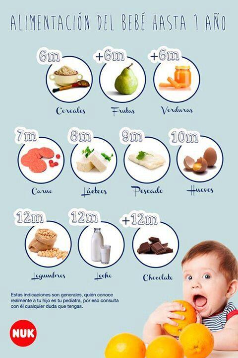 Alimentacion Del Bebe Hasta 1 Ano Comida Para Bebes Alimentacion Bebe Comida Bebe 6 Meses