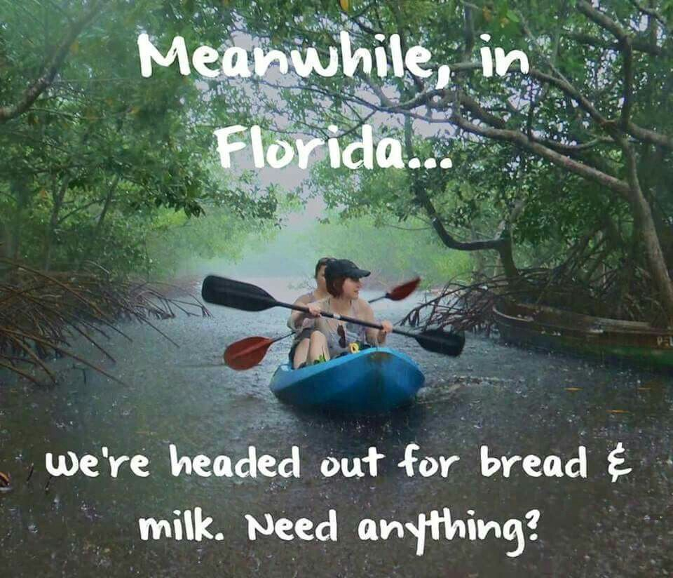 Hurricane season...rain, rain, rain! Florida weather