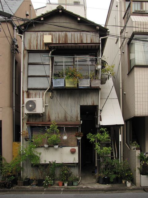 Photo of the Tokyo Potted Gardens 472