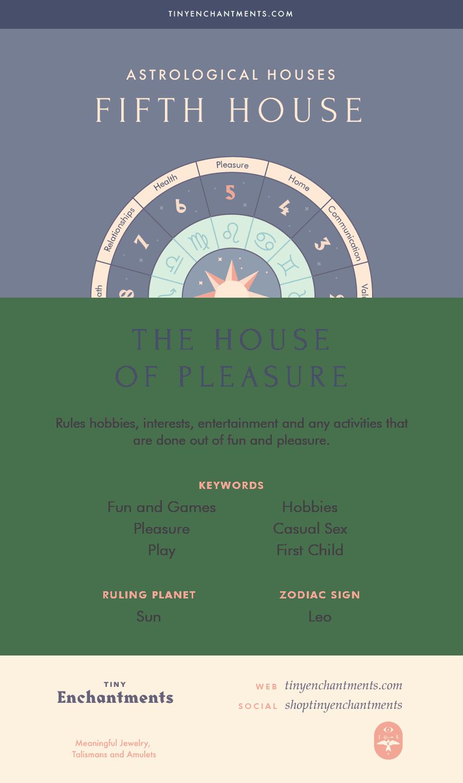 seventh house astrology leo