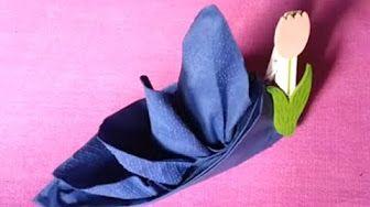 Pliage serviette noel avec pince