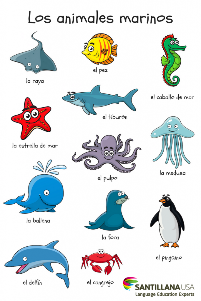 Los Animales Marinos Preschool Spanish Learning Spanish