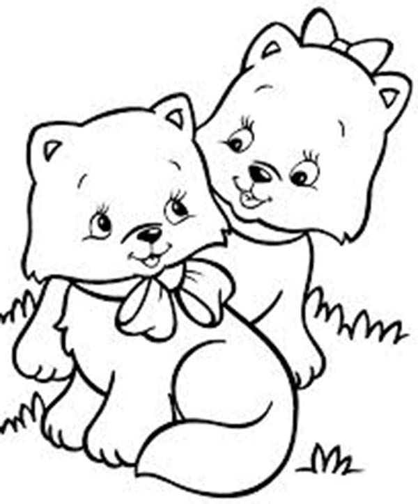 Two Very Cute Kitty Cat In The Park Coloring Page Kids Play Color Cat Coloring Page Dog Coloring Page Cartoon Coloring Pages