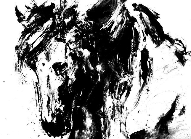 Horse Animal Art Print Black