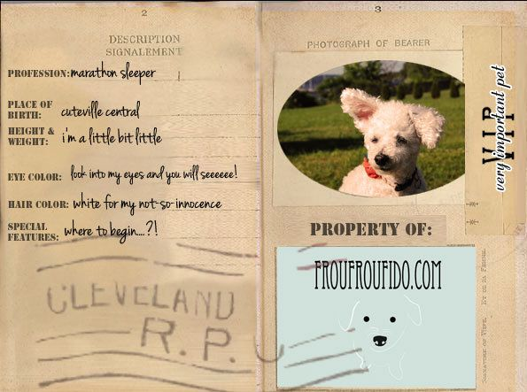 Get your own VIP doggie passport for FREE! http//www.etsy