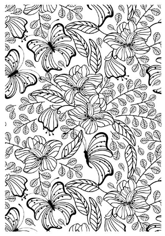 coloriage anti stress jolis papillons ou choisir un autre coloriage ...