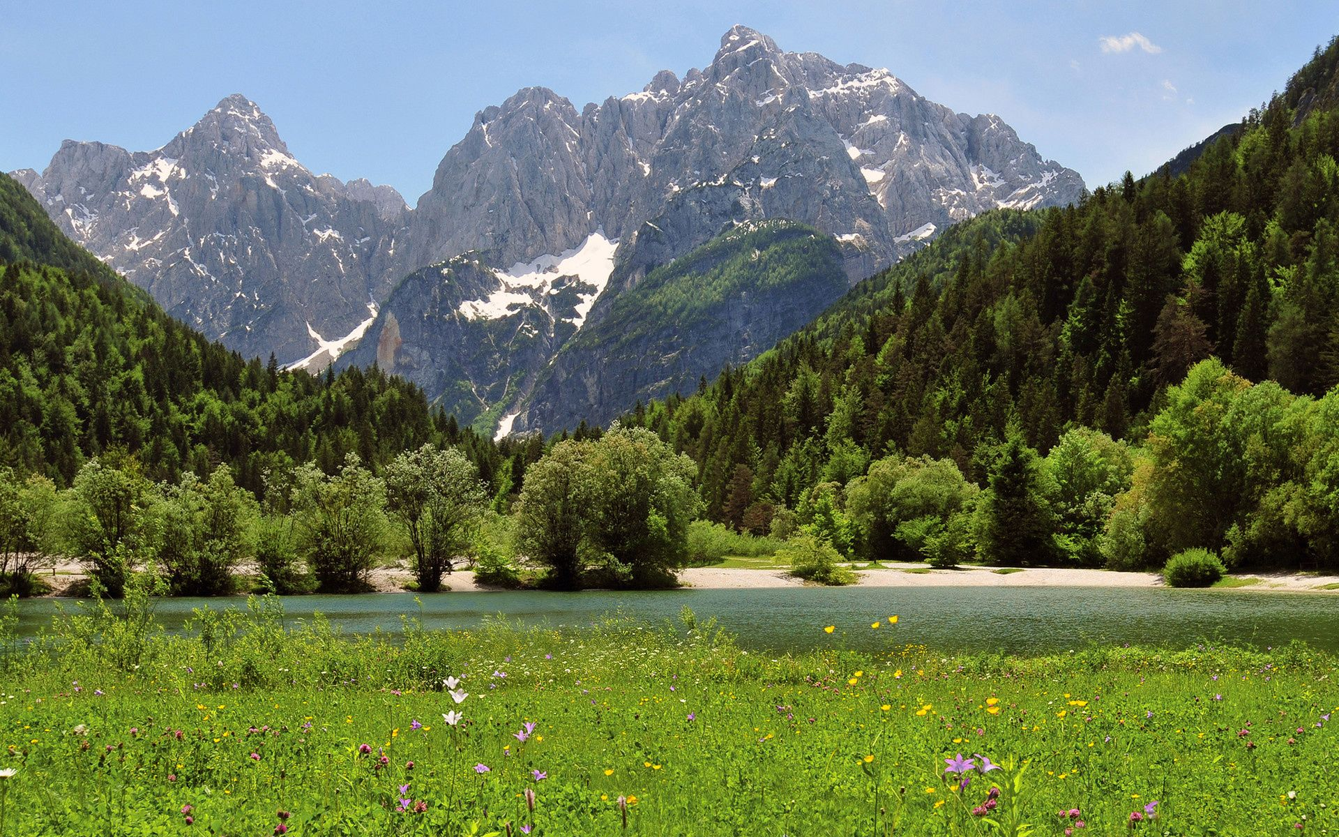 Free Amazing Spring Mountains views Wallpaper APK Download For