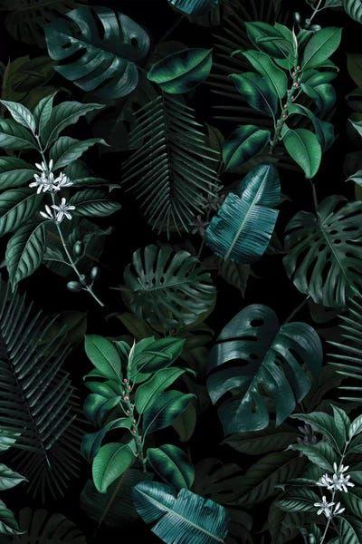 Tropical Garden II - Canvas Print