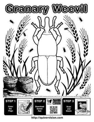 Our Augmented Reality Coloring Page Department Of Entomology Augmented Reality Coloring Pages Reality
