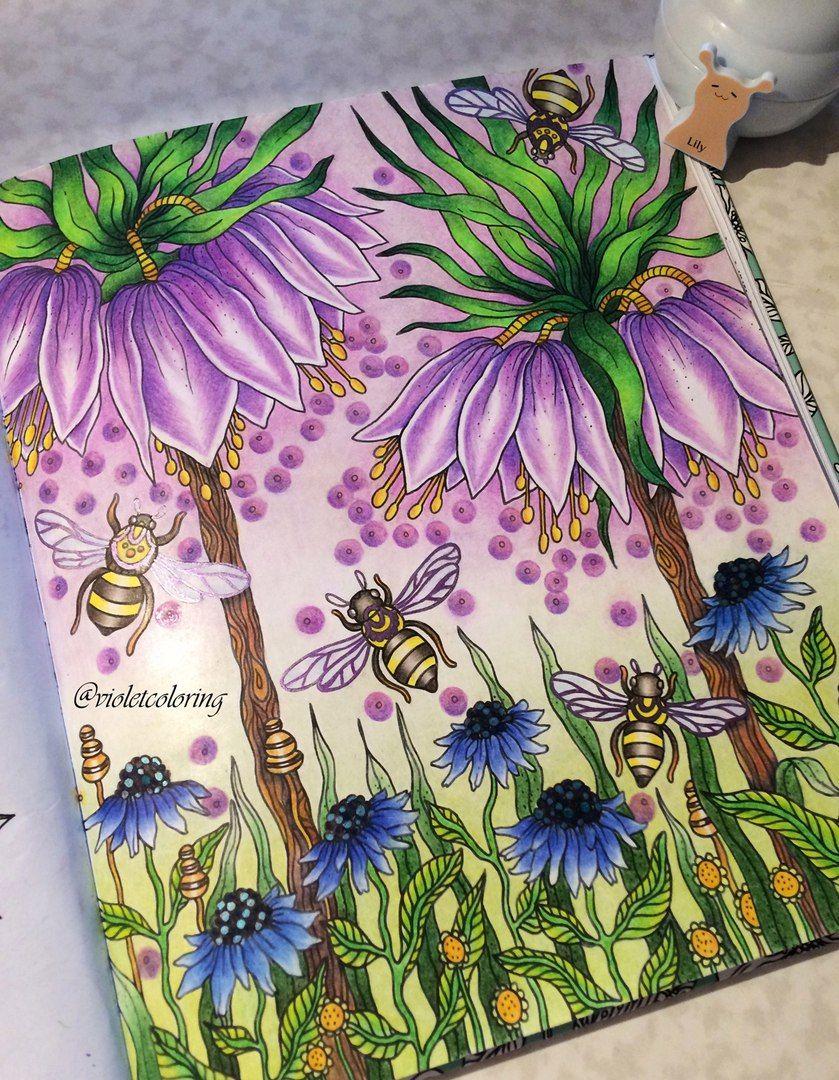 Раскраски | Зачарованный лес | Таинственный сад ...