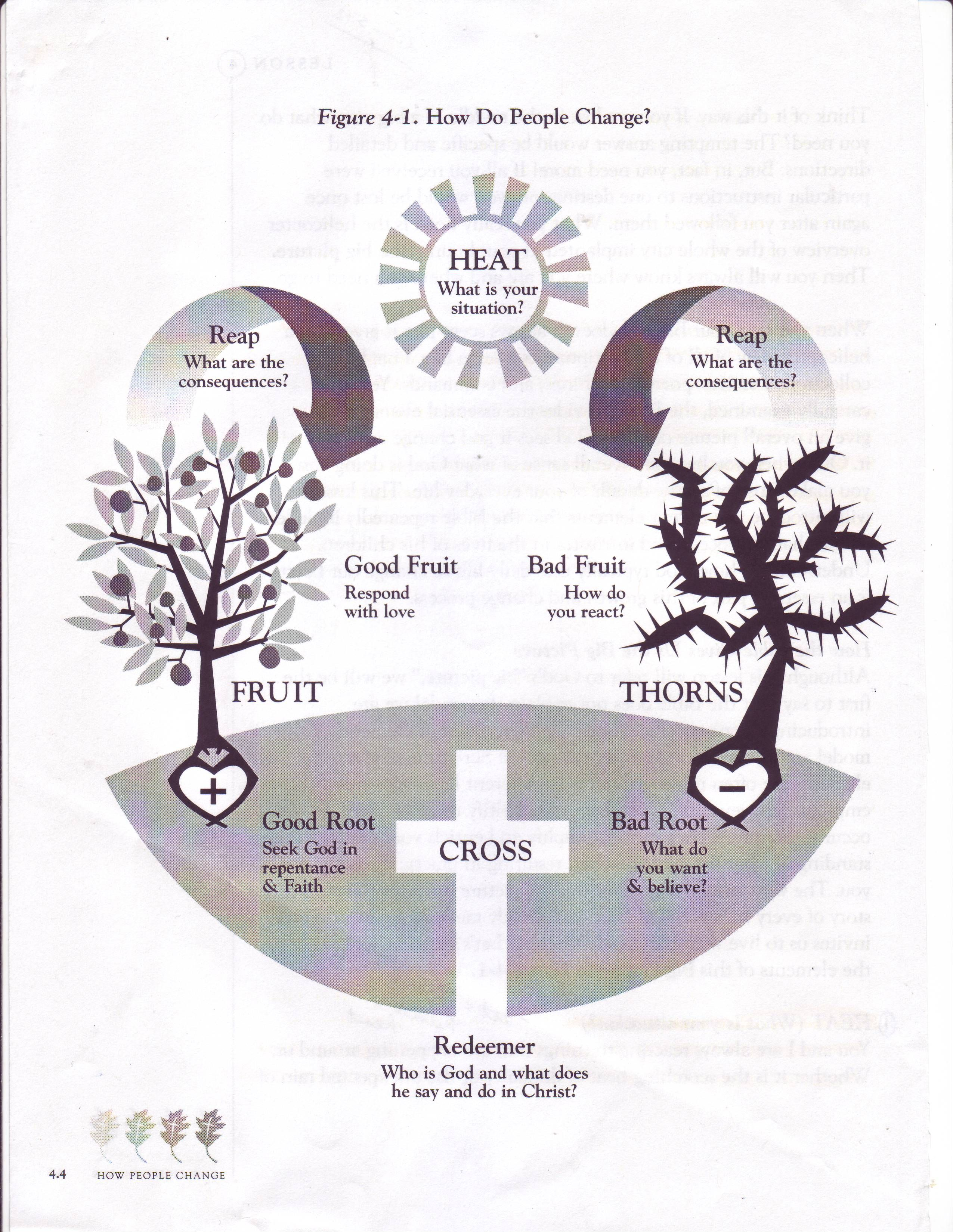 Ccef Sanctification Chart Tanc Illustrations Pinterest
