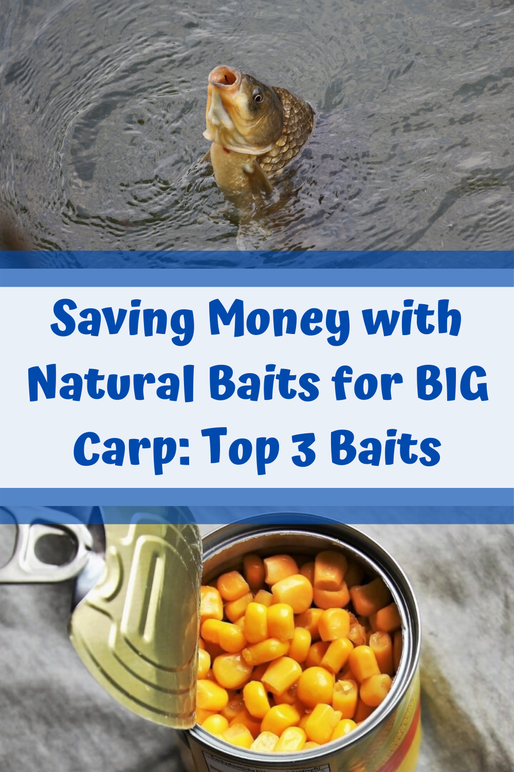 Wanna CATCH BIG CARP and still HAVE A LOT OF MONEY LEFT afterwards? Well, then I'd like to show you the SOLUTION TO ALL YOUR CARP BAITING PROBLEMS! Namely using NATURALY BAITS. These entails LOTS OF BENEFITS, the biggest one being the fact that NATURAL BAITS ARE PRETTY CHEAP AND STILL VERY EFFECTIVE. But, which baits should I chose, you might ask? Well, that's what I'm gonna reveal to you my recent article SAVING MONEY WITH NATURAL BAITS FOR BIG CARP: TOP 3 BAITS. HAVE FUN CATCHING SOME BIG CARP