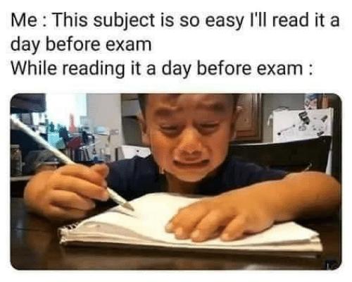 160 Studying/Exam Memes ideas   exams memes, memes, exam