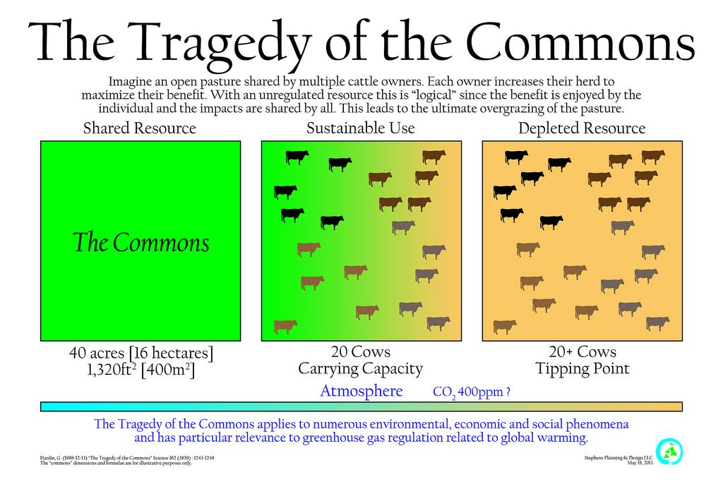 Illustrating The Tragedy Of Common Economic Theory Essay By Garrett Hardin Question