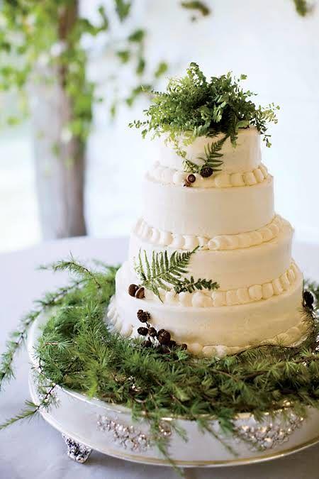 A Lush Wooded Island Wedding in Bar Harbor, Maine   Fern ...
