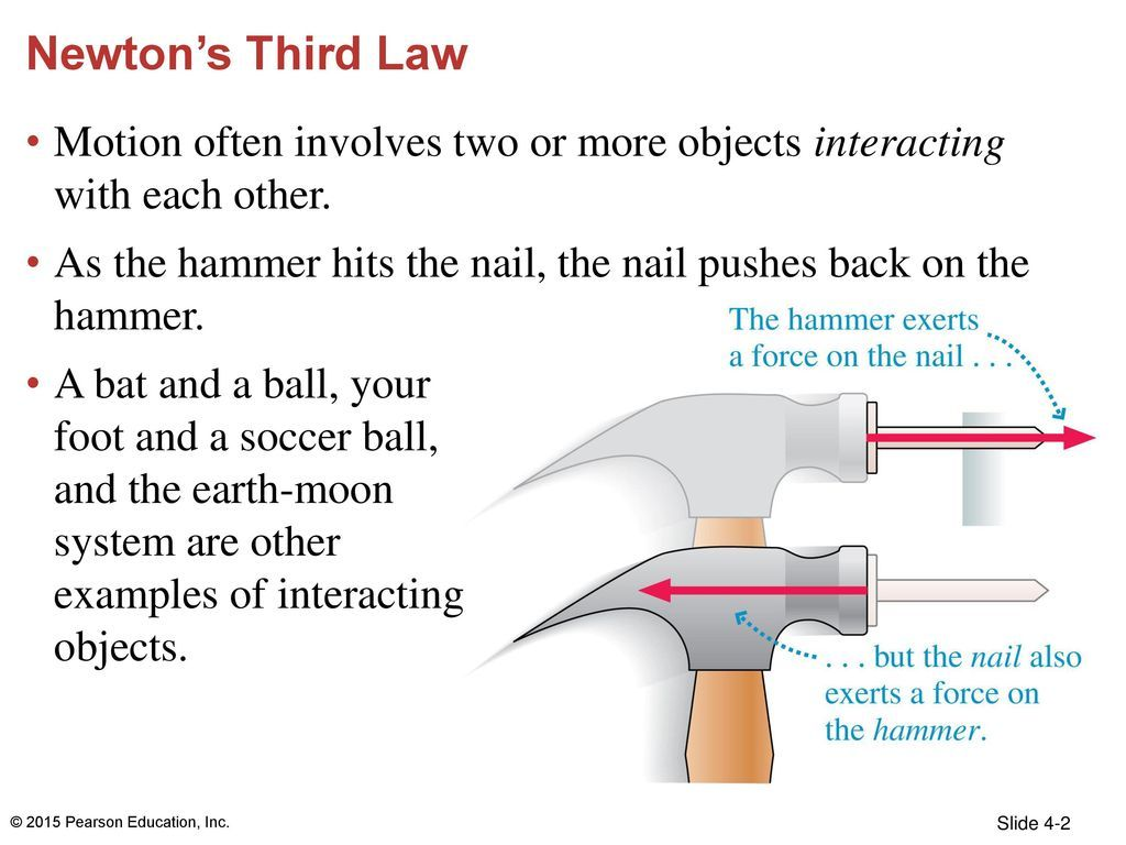 Image Result For Hammering Newton Newton Hammer Play Houses