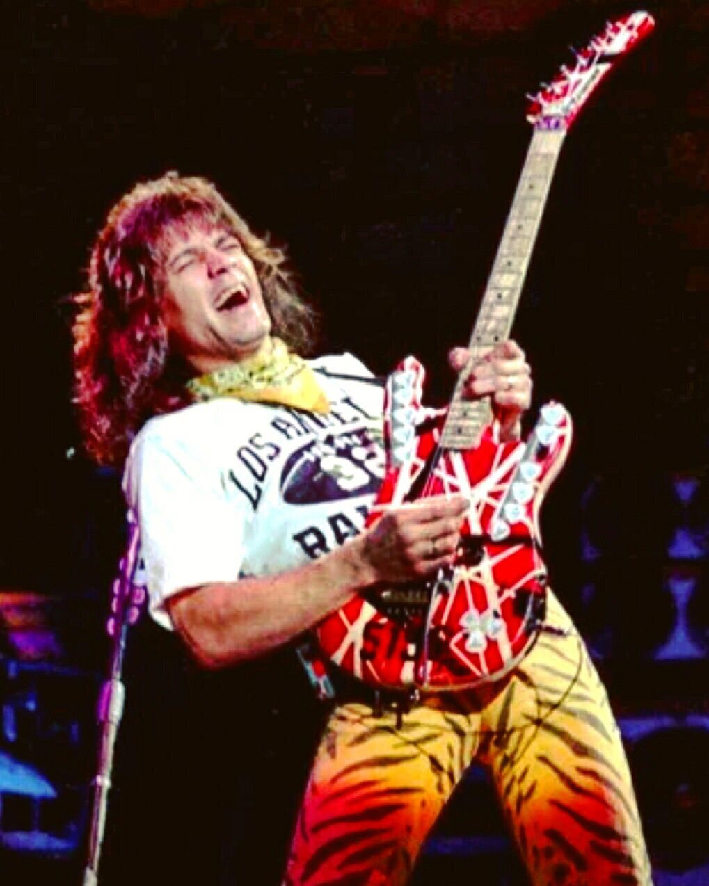 Eddie Van Halen 1984 Nfl Football Los Angeles Raiders Leopard Van Halen Eddie Van Halen Greatest Rock Bands