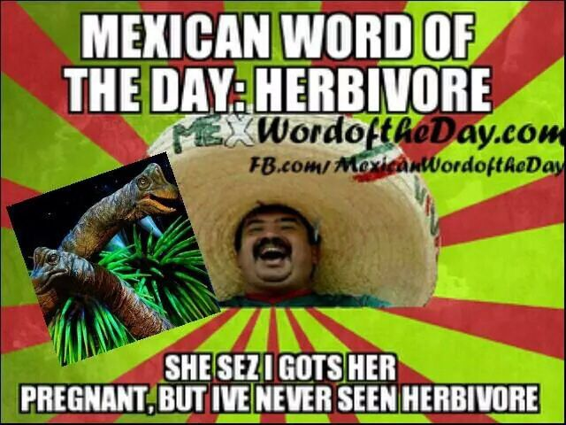 Funny Memes Funny Mexican: Mexican Word Of The Day