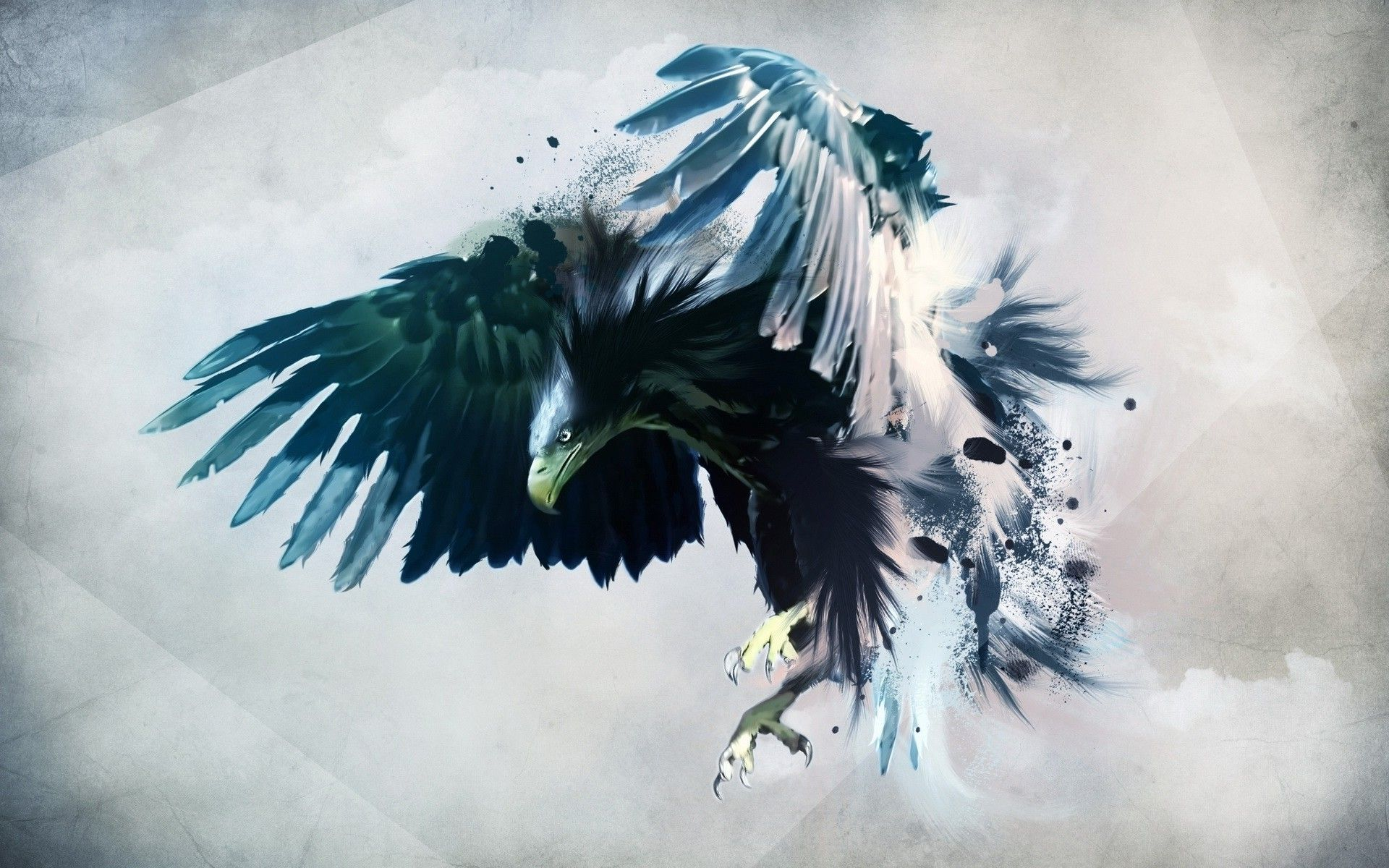 Hd wallpaper eagle - Bald Eagle Hd Wallpapers Backgrounds Wallpaper