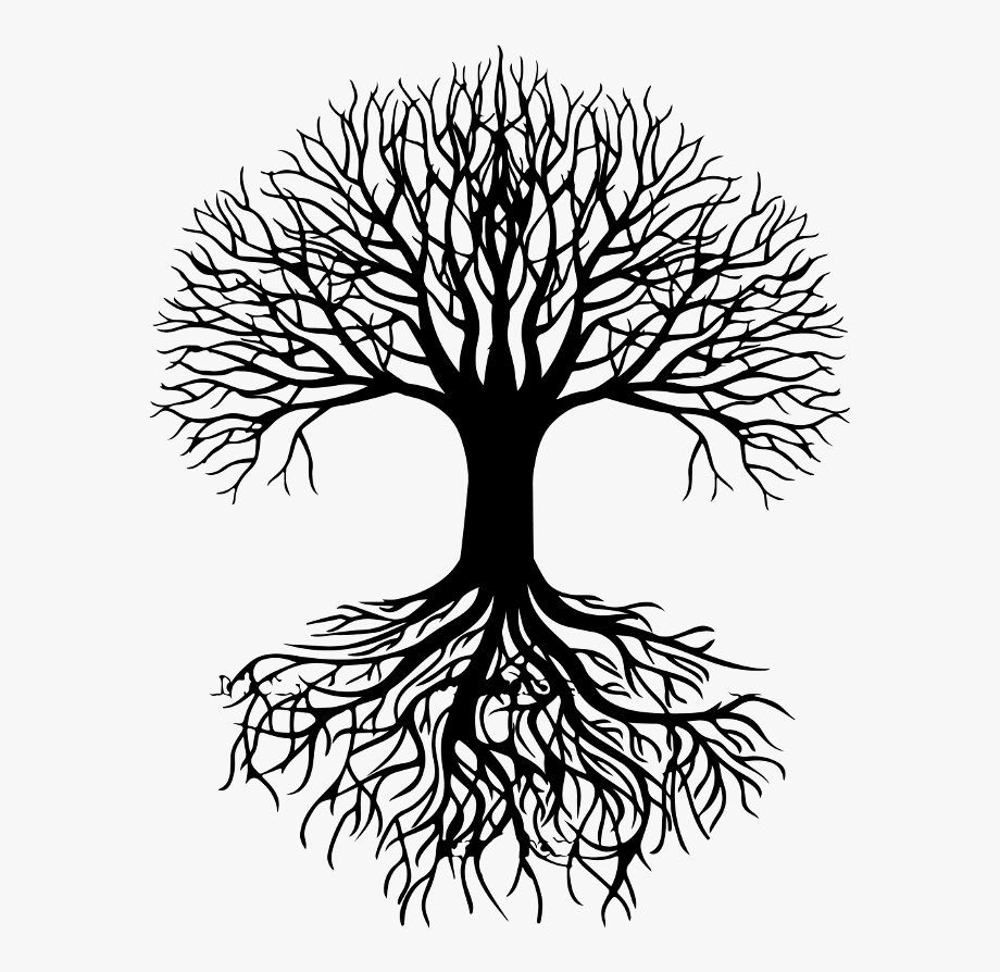 Roots Clipart Black And Transparent Tree Of Life Free Unlimited Download On Clipartwiki To Search Tree Of Life Artwork Tree Of Life Painting Roots Drawing