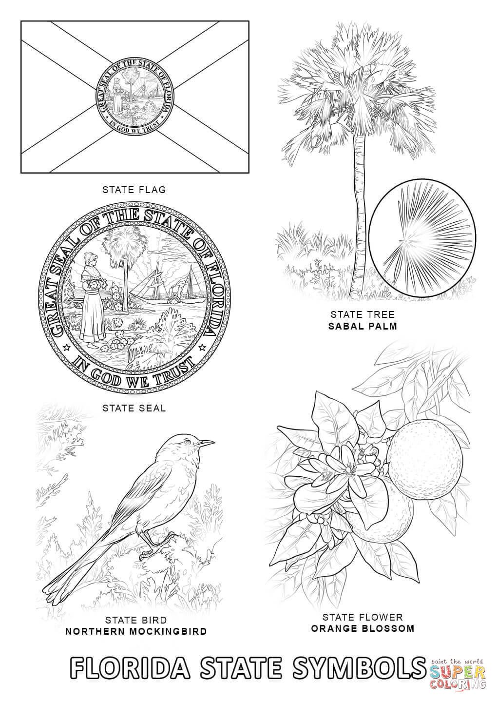 Florida State Symbols Coloring Page From Florida Category Select
