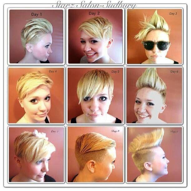 63 Purple Hair Color Ideas To Swoon Over Violet Purple Hair Dye Tips: Pixie Haircut, Hair Art, Hairdo