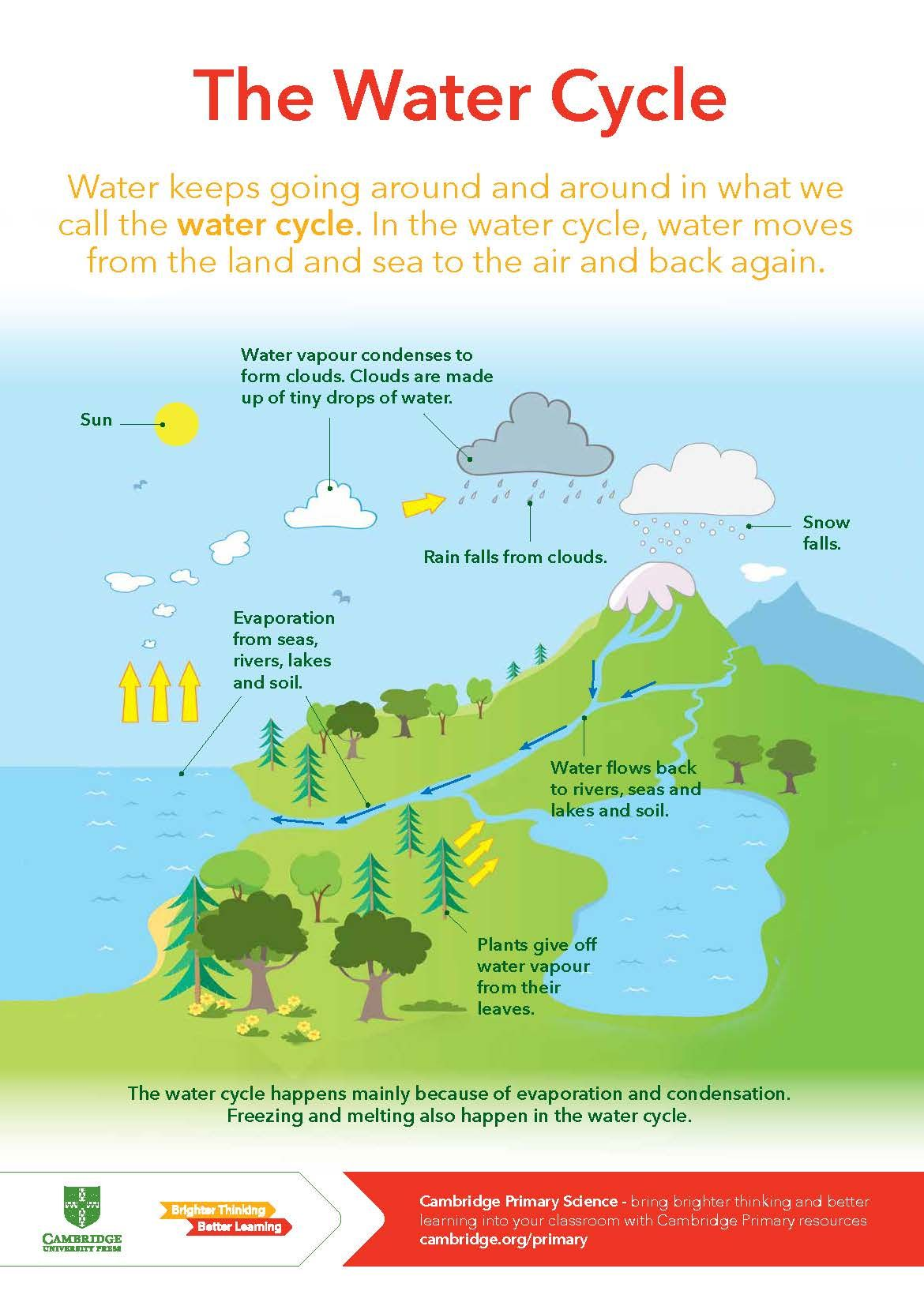 hight resolution of Cambridge Primary Science - The Water Cycle   Cambridge primary