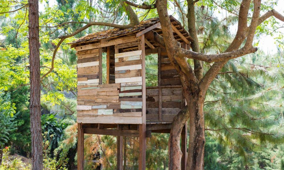 une cabane dans les arbres cabane pinterest tree. Black Bedroom Furniture Sets. Home Design Ideas