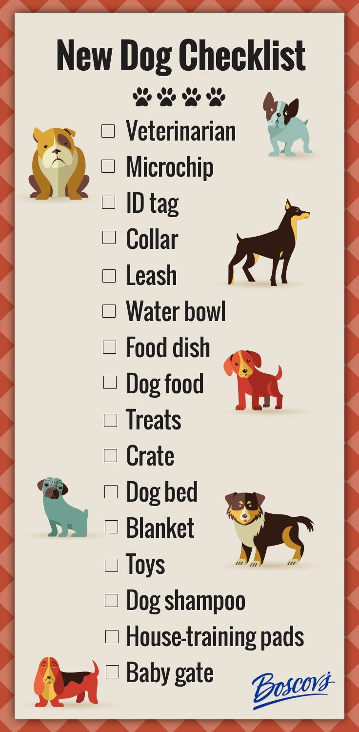 new puppy checklist: everything you need | infographic, dog and pup