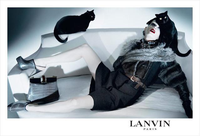 black cats fashion