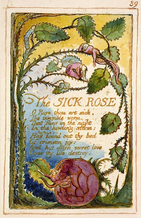 「sick rose william blake」の画像検索結果