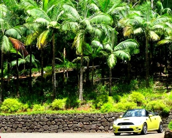 Tips For Getting The Most Out Of Your Car Rental In Mauritius