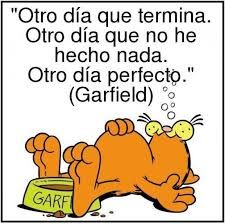 Resultado De Imagen Para Garfield Frases Garfield Imagenes