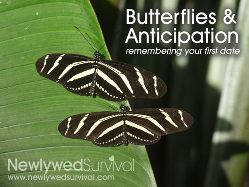 Saturday Spark – Remember Dating? The feeling of butterflies and anticipation?